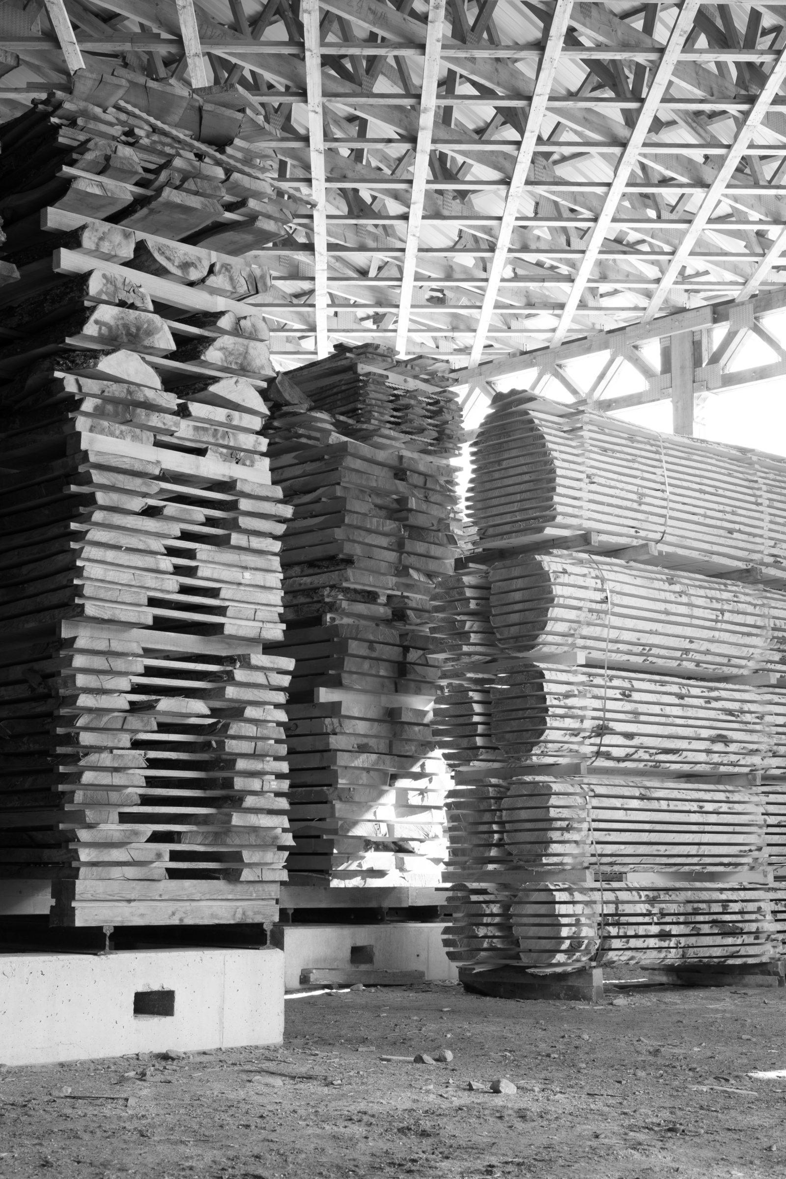Mondholz, Holz, Schnittholz, Tischlerei, Thoma, The Trees of Life